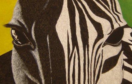 Cavallo – Zebra